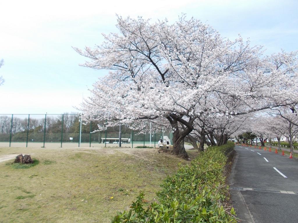 小幡緑地公園西園