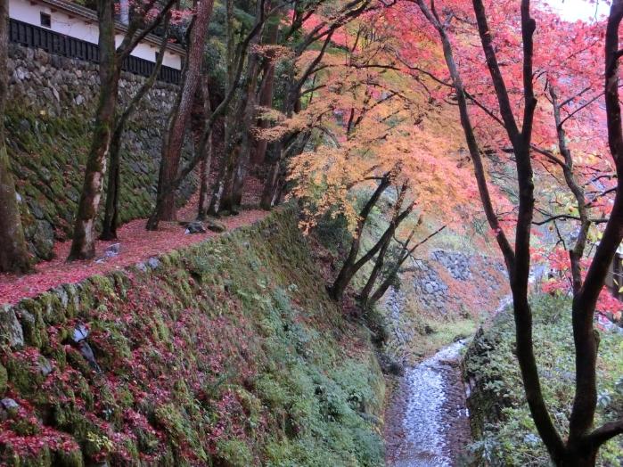 秋の野外研修12s
