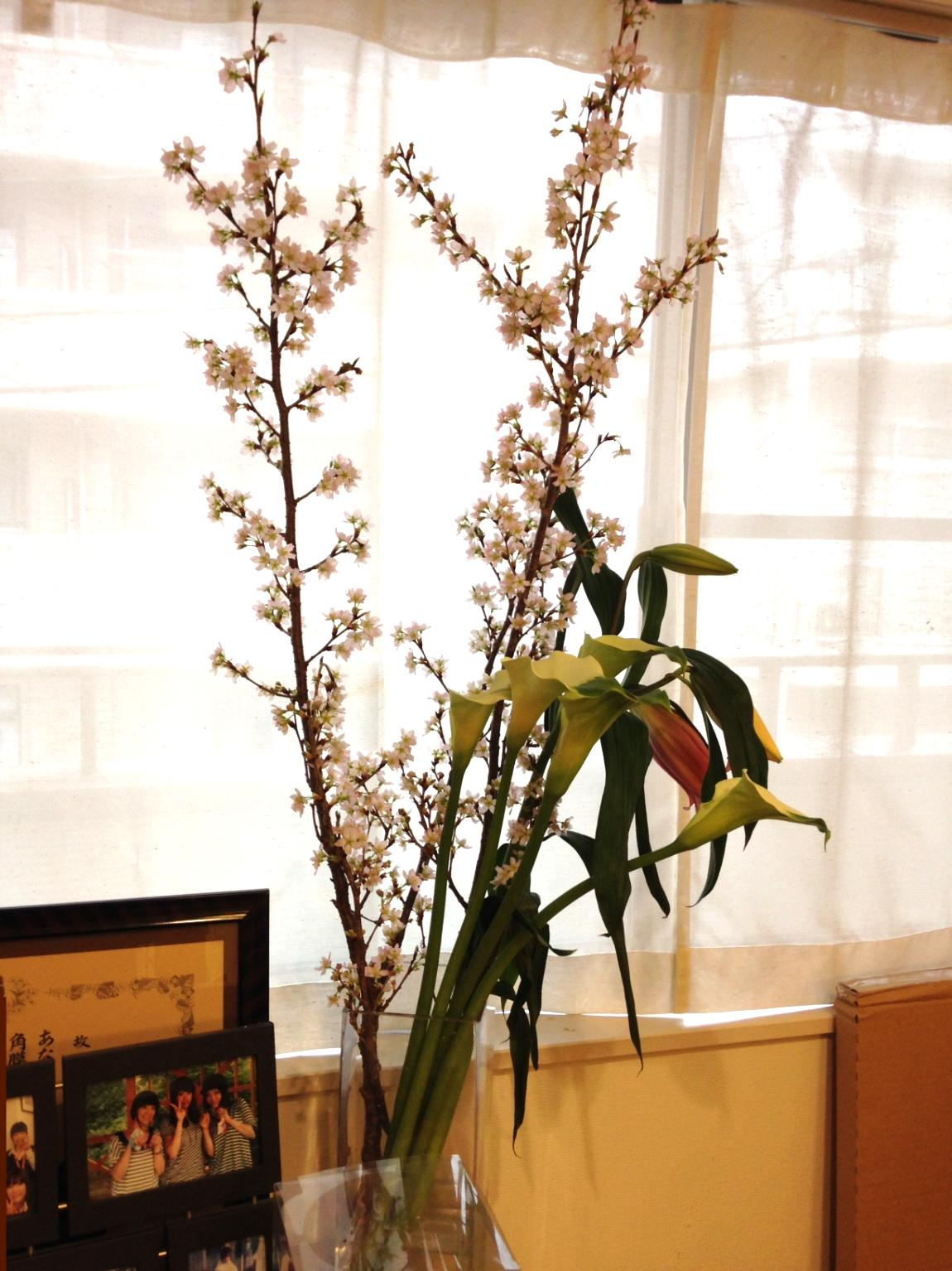 一足早く春の花