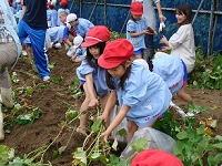 10月青竜第二幼稚園