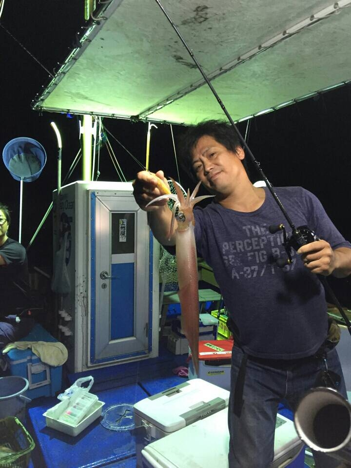 胴長 50cm ケンサキイカ