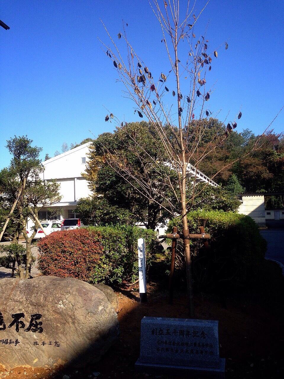 向陽高校植樹祭01