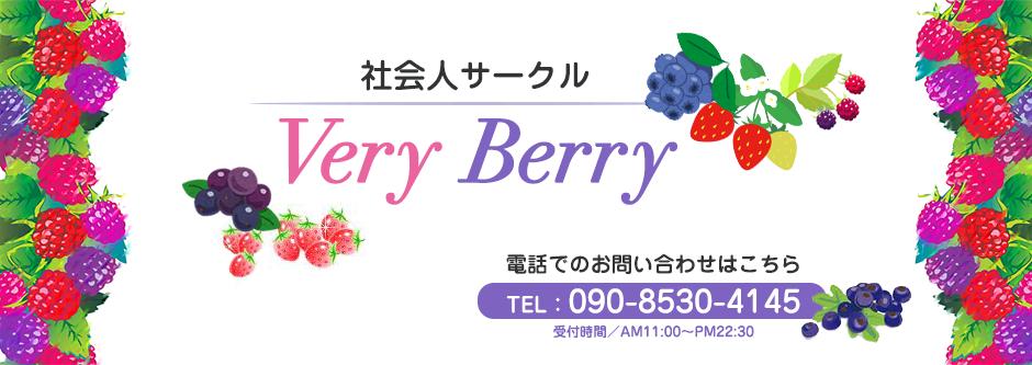 岡山社会人サークルVeryBerry