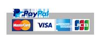 Pay Palロゴ