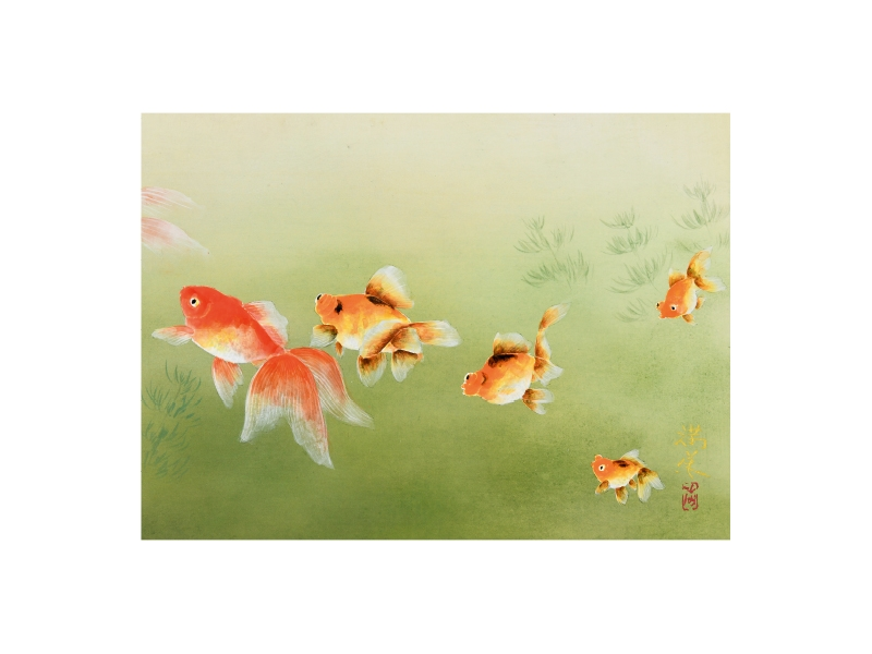 齋藤 満栄 「金魚」 ©Mitsuei Saito