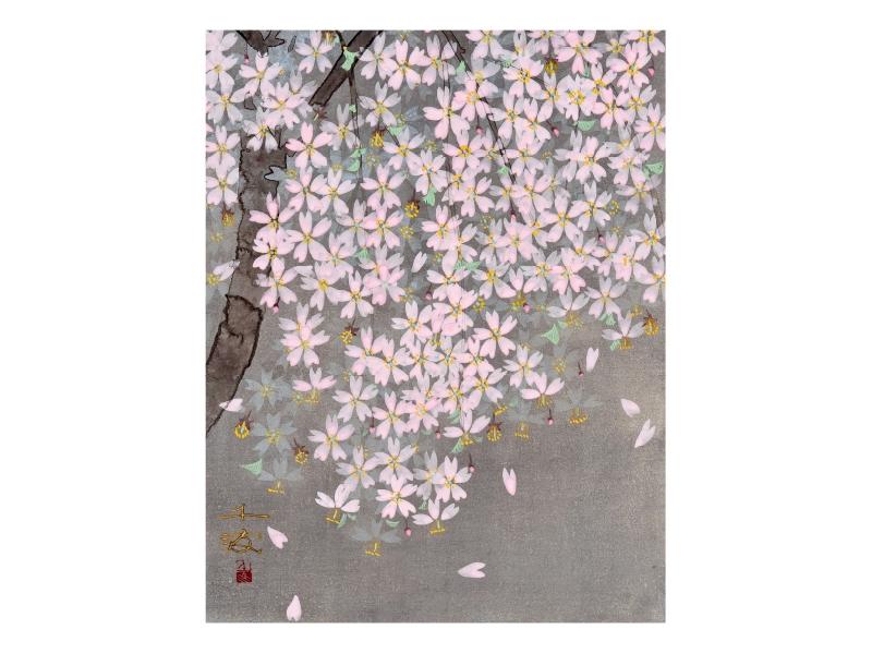 中島 千波 「しだれ桜」©Chinami Nakajima