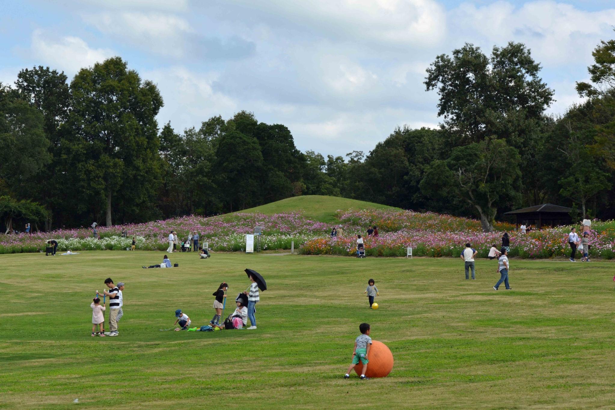 秋のまんのう公園