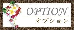 メグリール_オプションコース