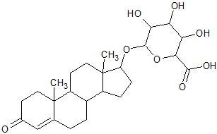 テストステロン グルクロン酸抱合体 構造式