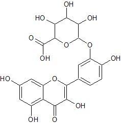 ケルセチン 3'-グルクロン酸抱合体
