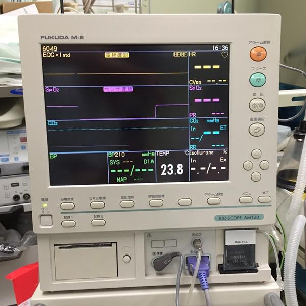 かみた動物病院 生体モニター