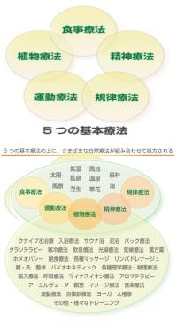 5つの基本療法