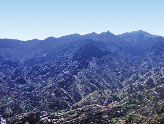 白谷雲水峡1日トレッキング