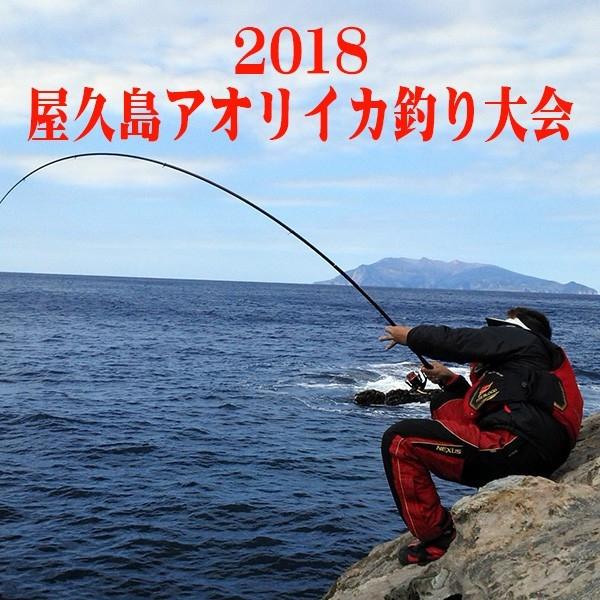アオリイカ釣り大会