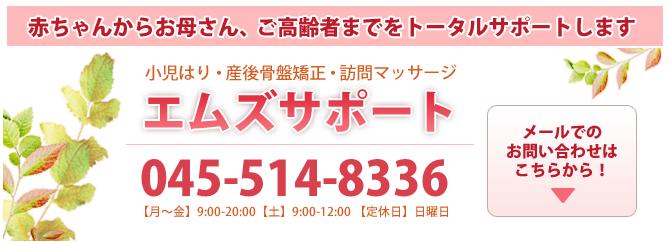 赤ちゃんからお母さん、ご高齢者までをトータルサポートします エムズサポート 045-514-8336