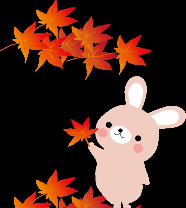 うさぎと紅葉