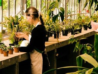 会社概要 モルタル造形・エクステリアなどお庭づくりなら漆原造園土木で 群馬県