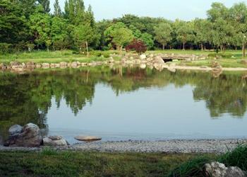 ひごいの池