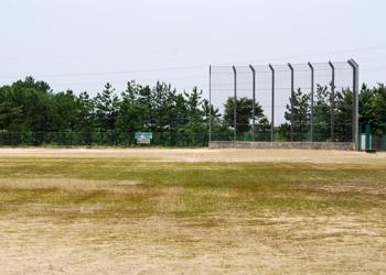 軟式野球場