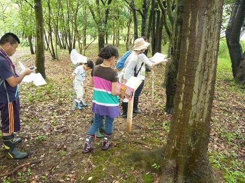謎解き森林体験