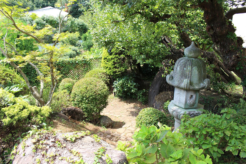 庭の風景写真