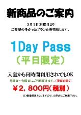 1Day Pass