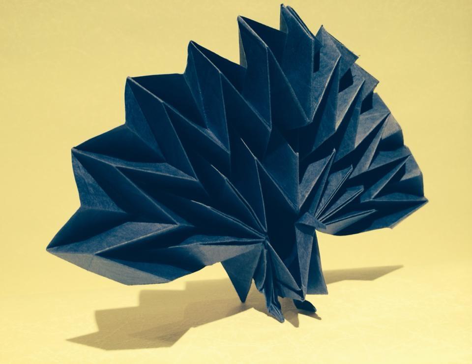 すべての折り紙 カエル 折り紙 : 折り紙「孔雀」