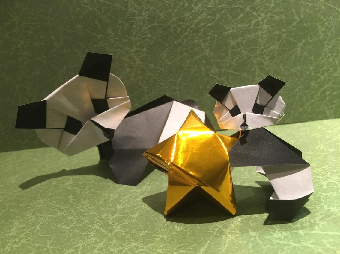 折り紙体験のお知らせです♪ 「星とパンダ」を折ろう!