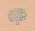 「あらきの木」