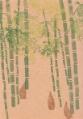 「竹林とタケノコ」