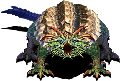 亀ドラゴンAce