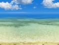 浜辺戦闘背景