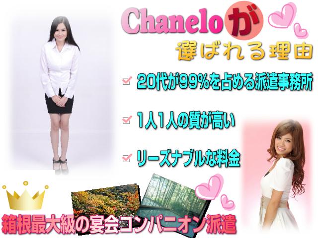 箱根の宴会コンパニオン派遣会社|湯本・強羅・大平台温泉