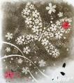 フラワー 夜桜