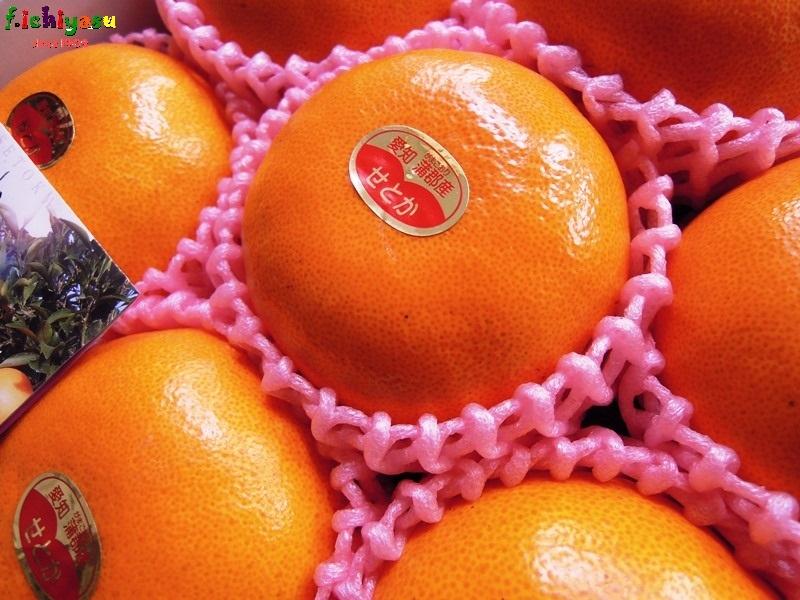 蒲郡柑橘の「温室栽培 せとか」 Today's Fruits ♪