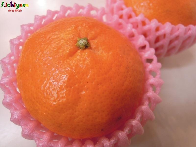 甘くて平べったいから「甘平」… Today's Fruits ♪