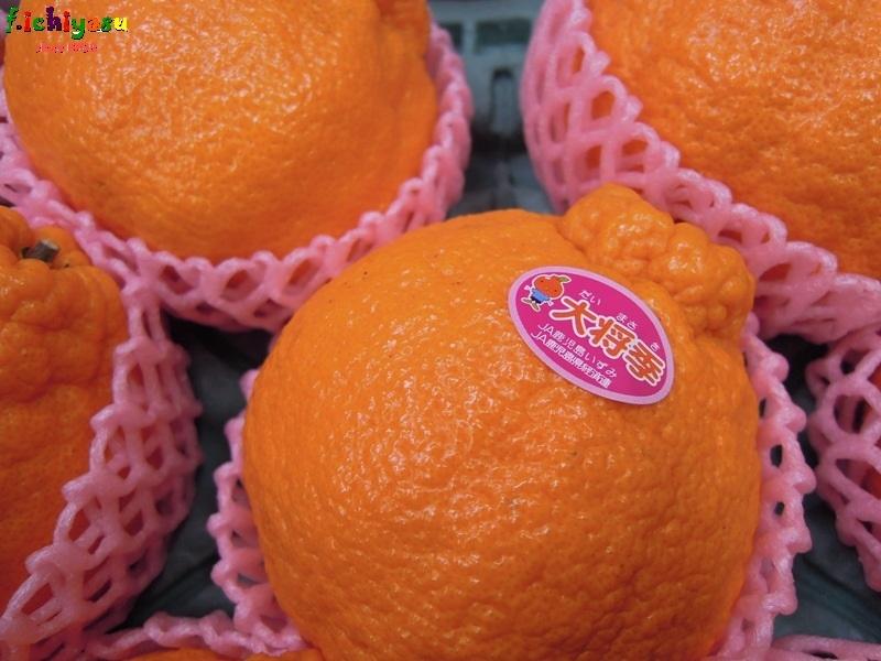 我が名は「大将季」 Today's Fruits ♪