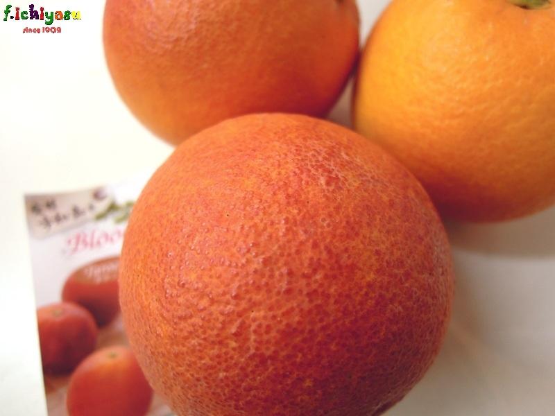 ブラッドオレンジ