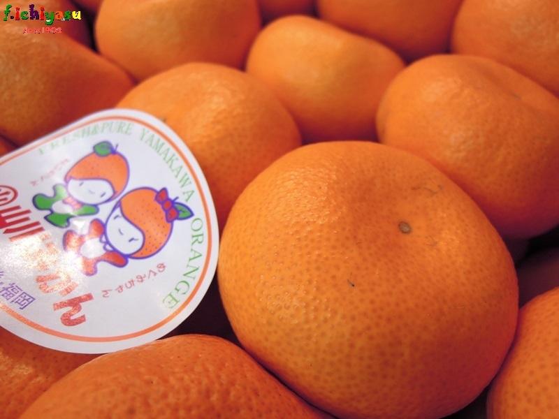 本貯蔵「山川みかん」 Today's Fruits ♪