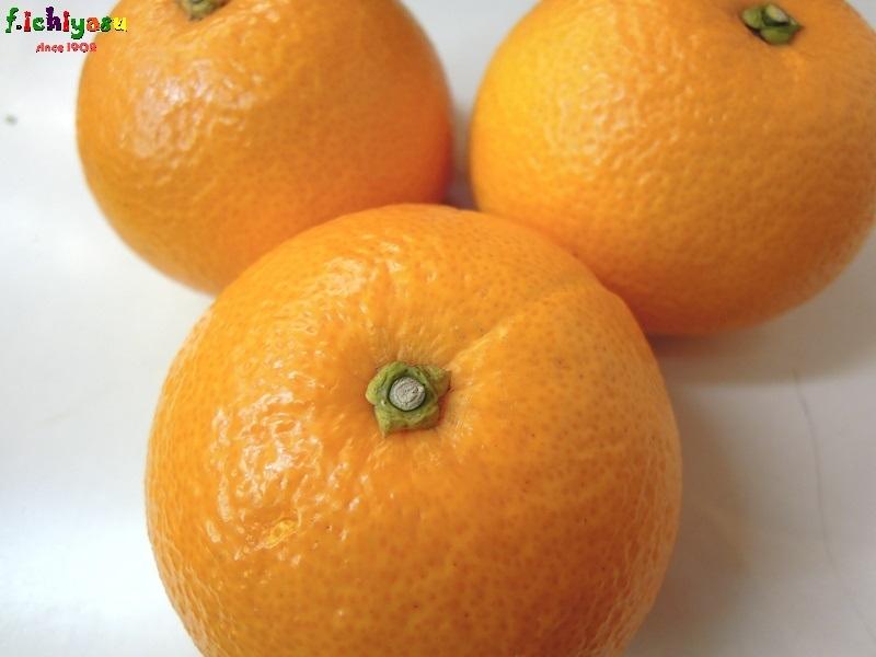 「木成り 八朔」有り〼 Today's Fruits ♪