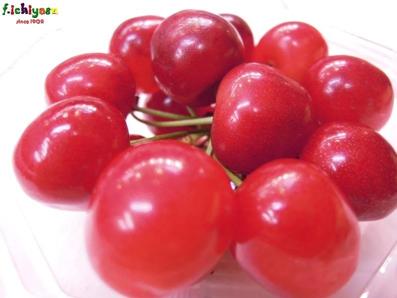 サクランボ農家イチオシの「紅秀峰」 Today's Fruits ♪