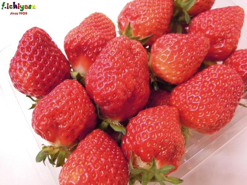 宝交イチゴ