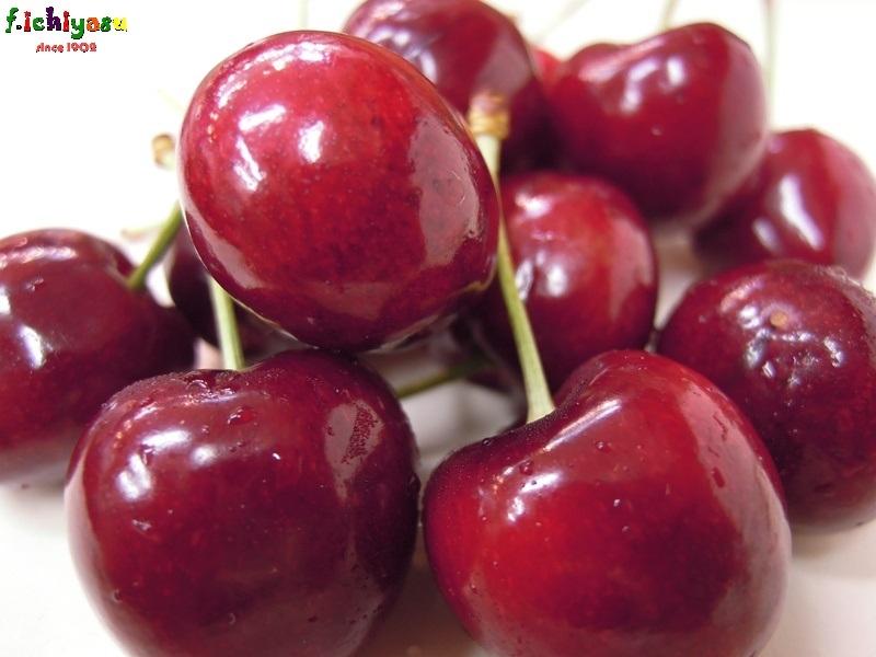 Bing Cherry Today's Fruits ♪