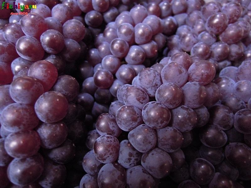 「高松ぶどう」出たよ (^^♪ Today's Fruits ♪