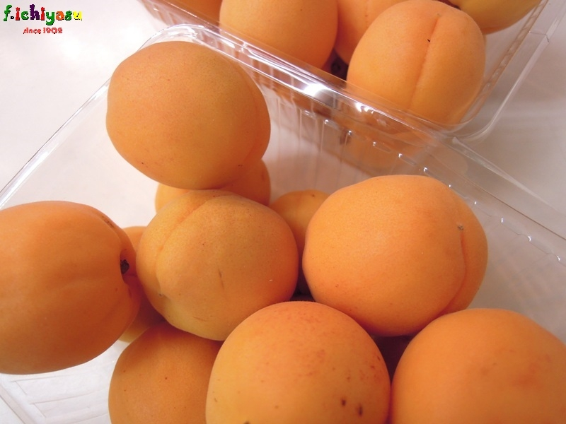 「氷室のあんず」 Today's Fruits ♪