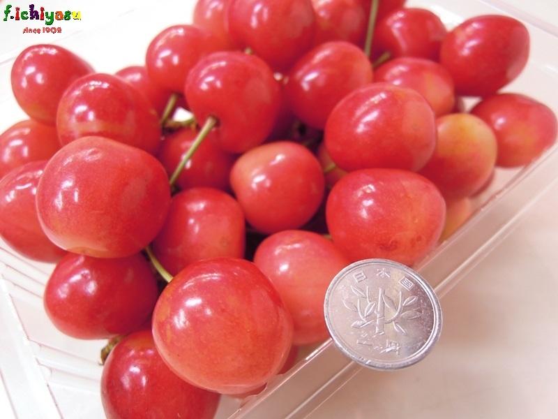 知る人ぞ知る!「南陽」 Today's Fruits ♪