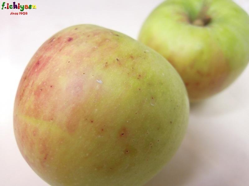 金沢のりんご「つがる」 Today's Fruits ♪