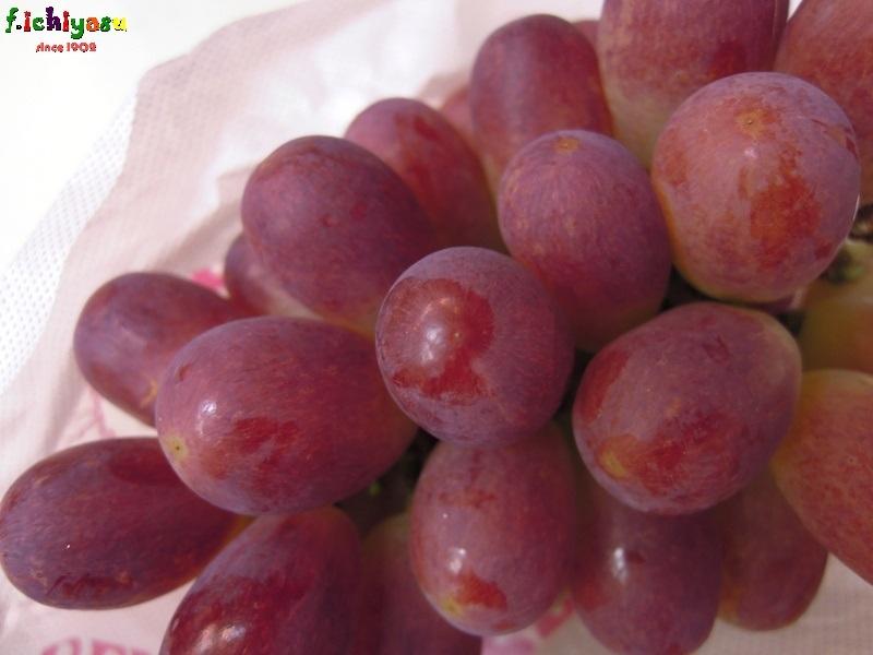 山梨・笛吹の「サニードルチェ」 Today's Fruits ♪