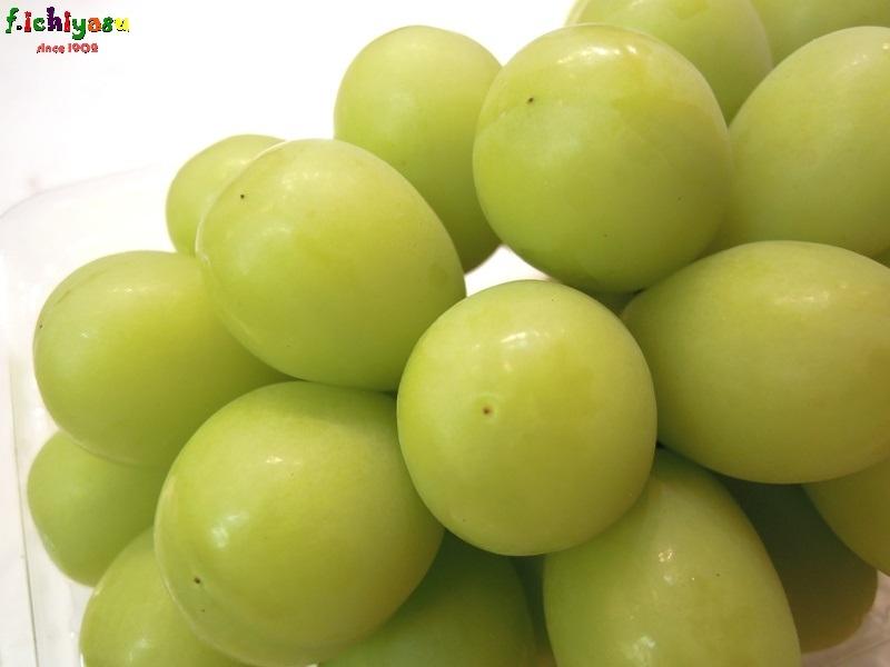 地物の「シャインマスカット」 Today's Fruits ♪