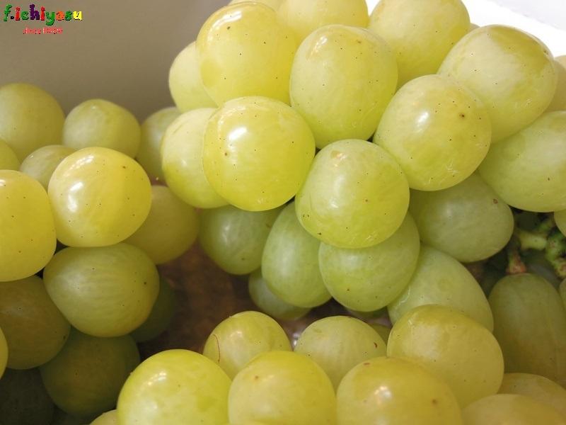 希少品種です!「アリサ」 Today's Fruits ♪